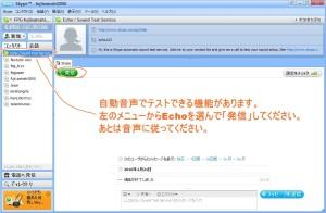 スカイプのインストール説明 Echo/Sound Test Serviceの画面