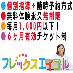 フレックスエイゴル100-100-20151116のコピー
